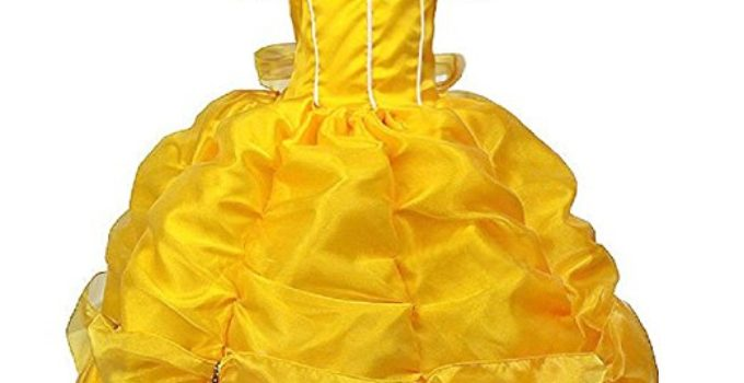 Disney Beauty and Beast Princess Dress Kids Costume