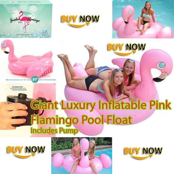 Giant Luxury Inflatable Pink Flamingo Pool Float Fun Toy Review